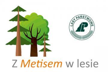 Logo: Formy ochrony przyrody na terenie Lasów Państwowych