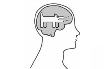 Logo: Niezbędnik nastolatka, sposoby na szczekającego psa